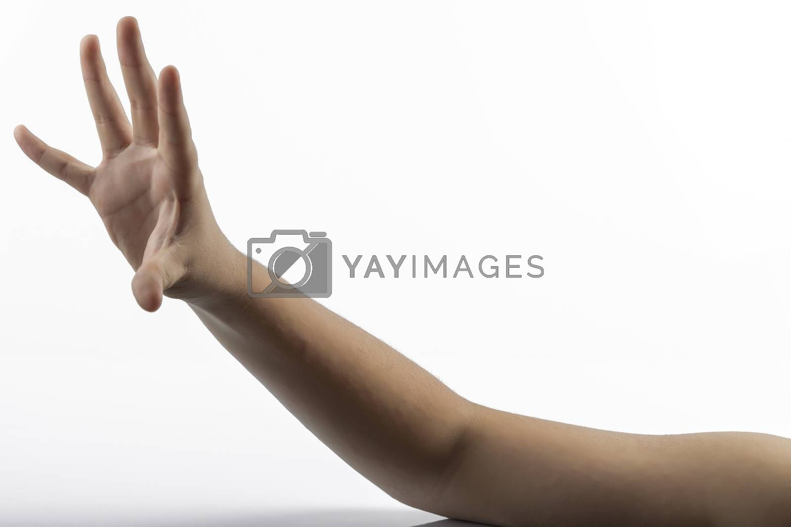 Young hands makes a gesture in rock-paper-scissors game: paper sign