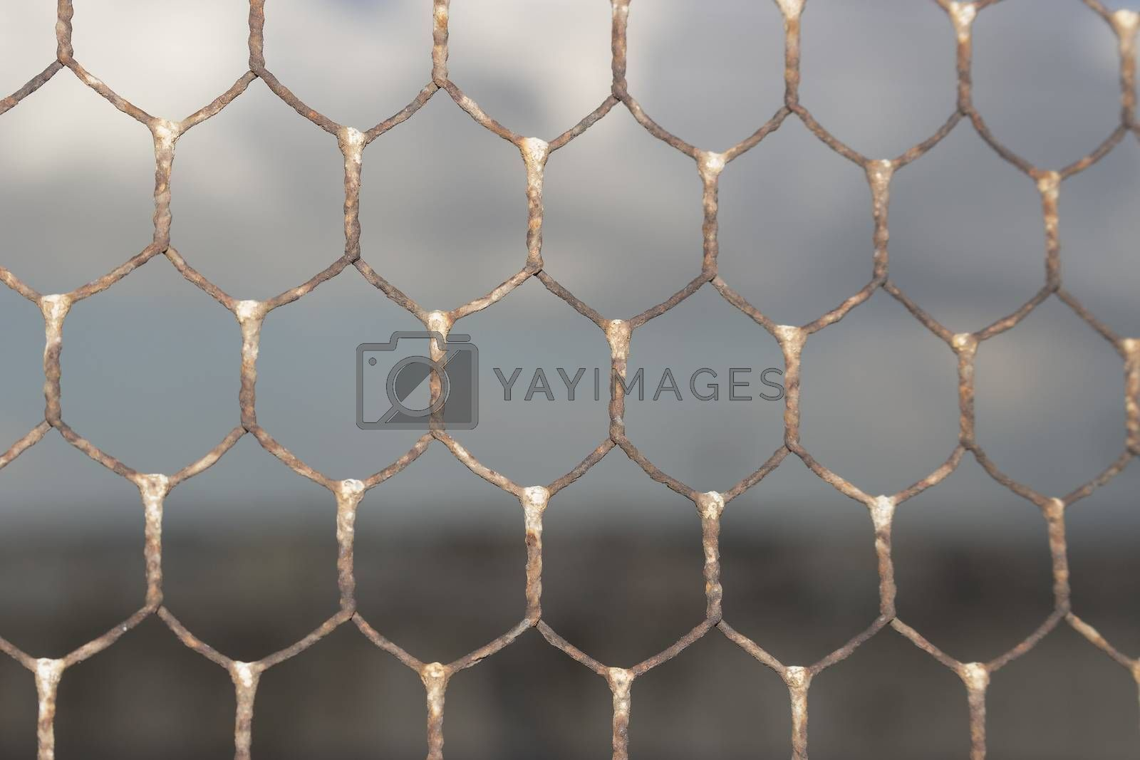 Rusty old wire netting on the roof of Doxi Stracca Fontana Palace about 1760 A.D. in the old town of Gallipoli (Le)) in the southern Italy