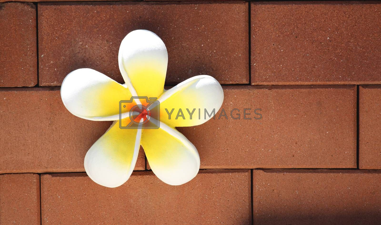 Artificial plumeria on brown brick wall.