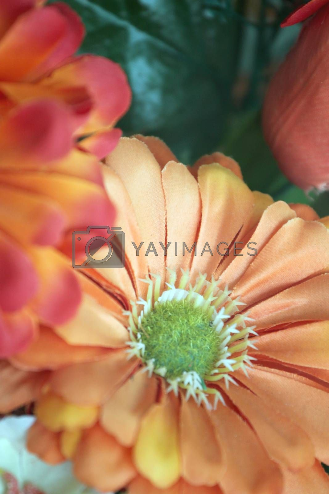 Orange flowers with fabric for design and decor.