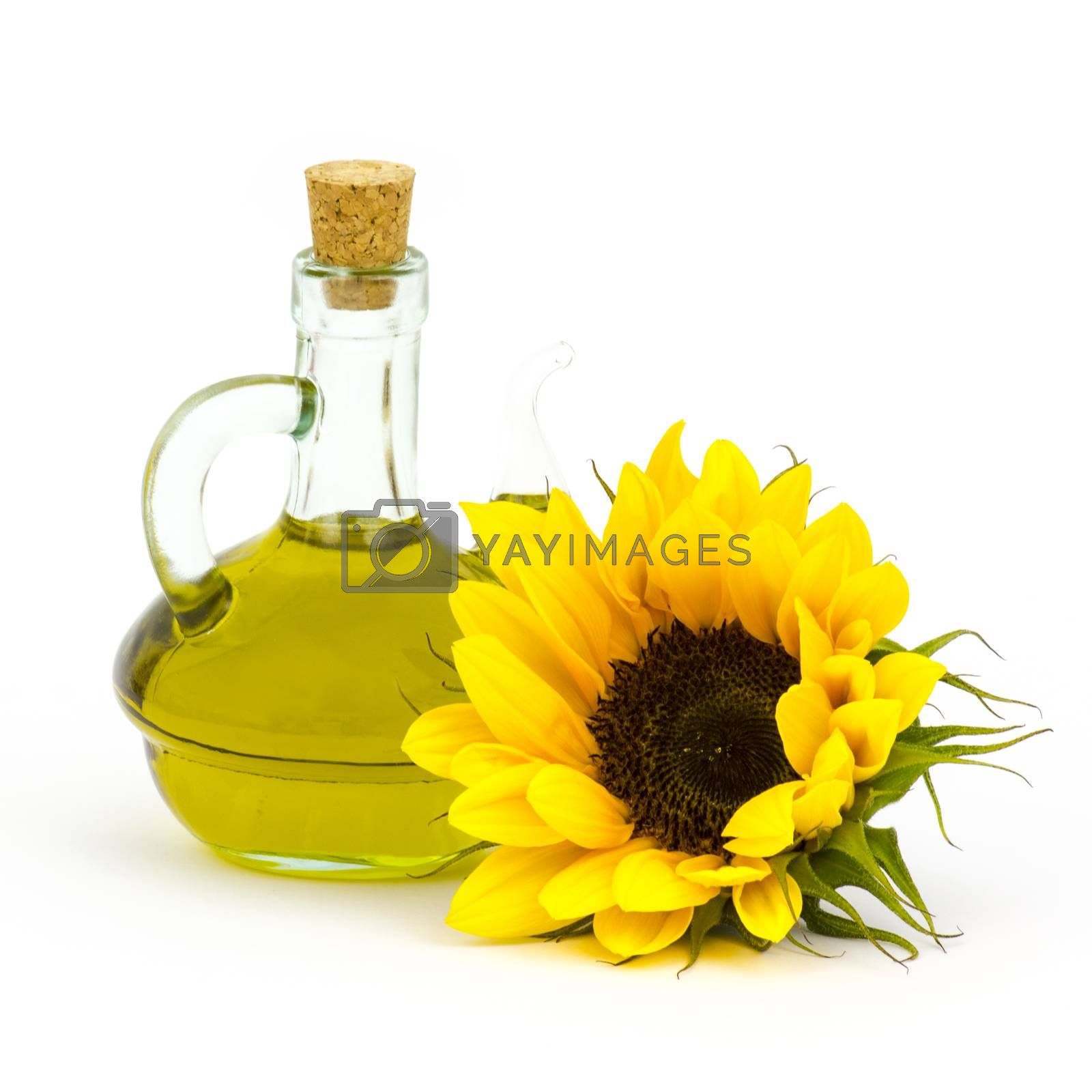 sunflower oil and sunflowers isolated on white background