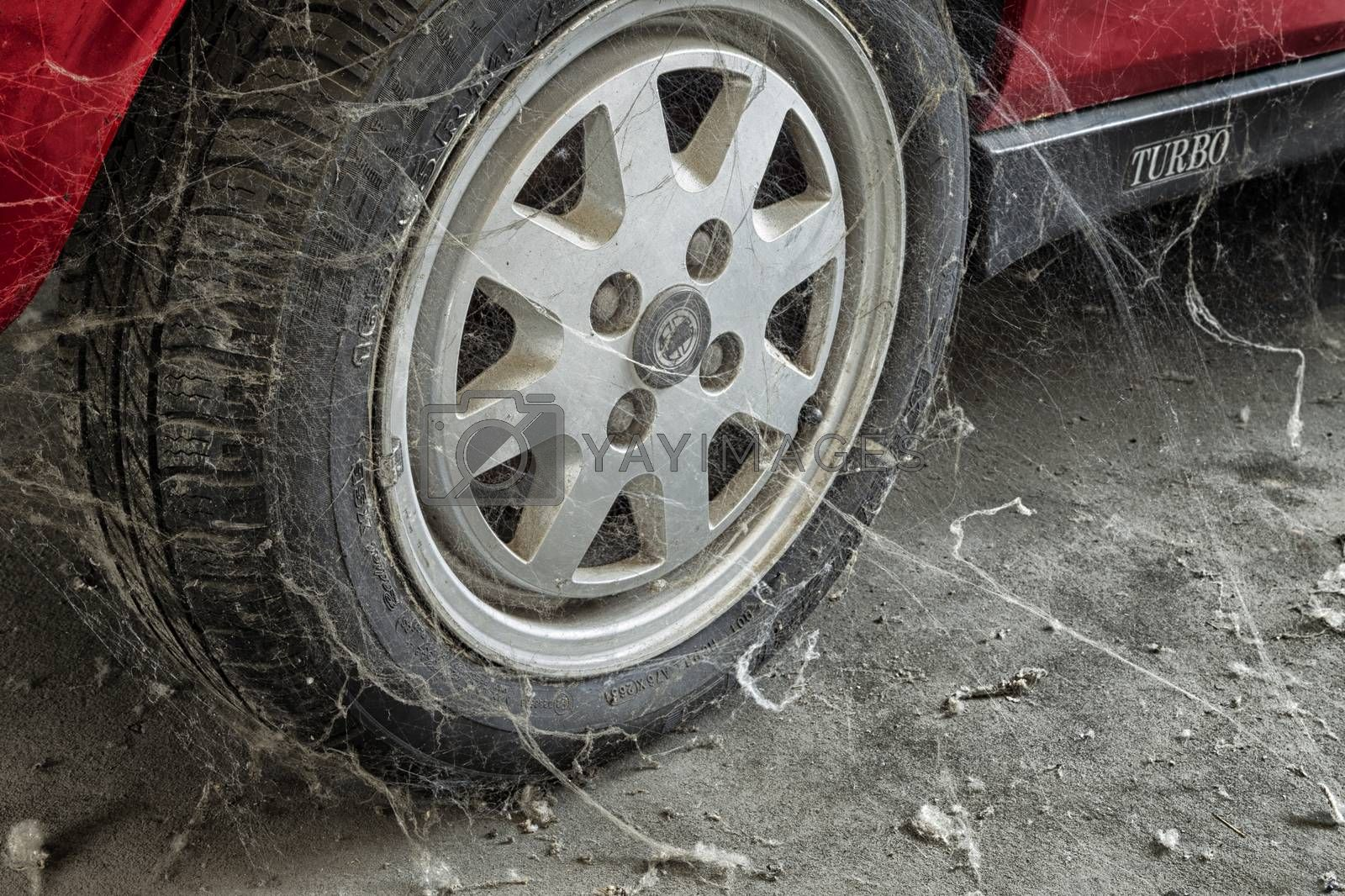 A 80���s car tire among cobwebs and dust