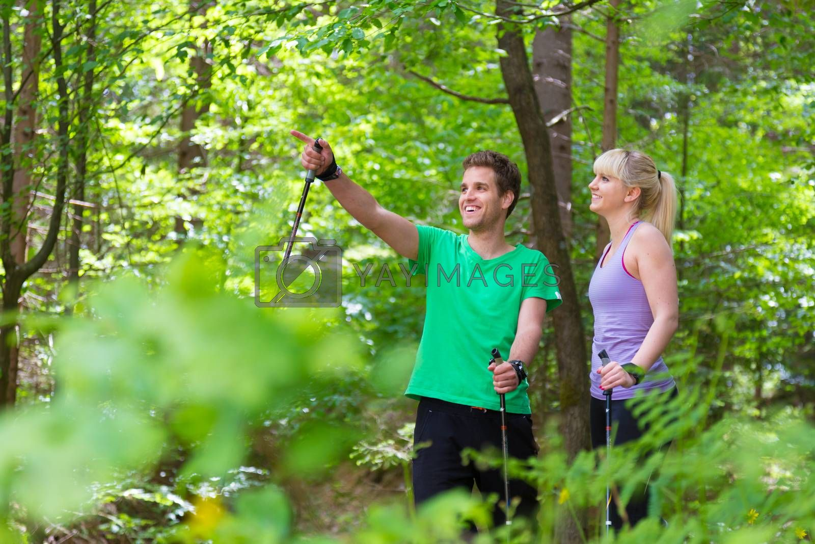 Young spoty active cople with hiking sticks walking in nature. Active lifestyle. Activities and recreation outdoors.