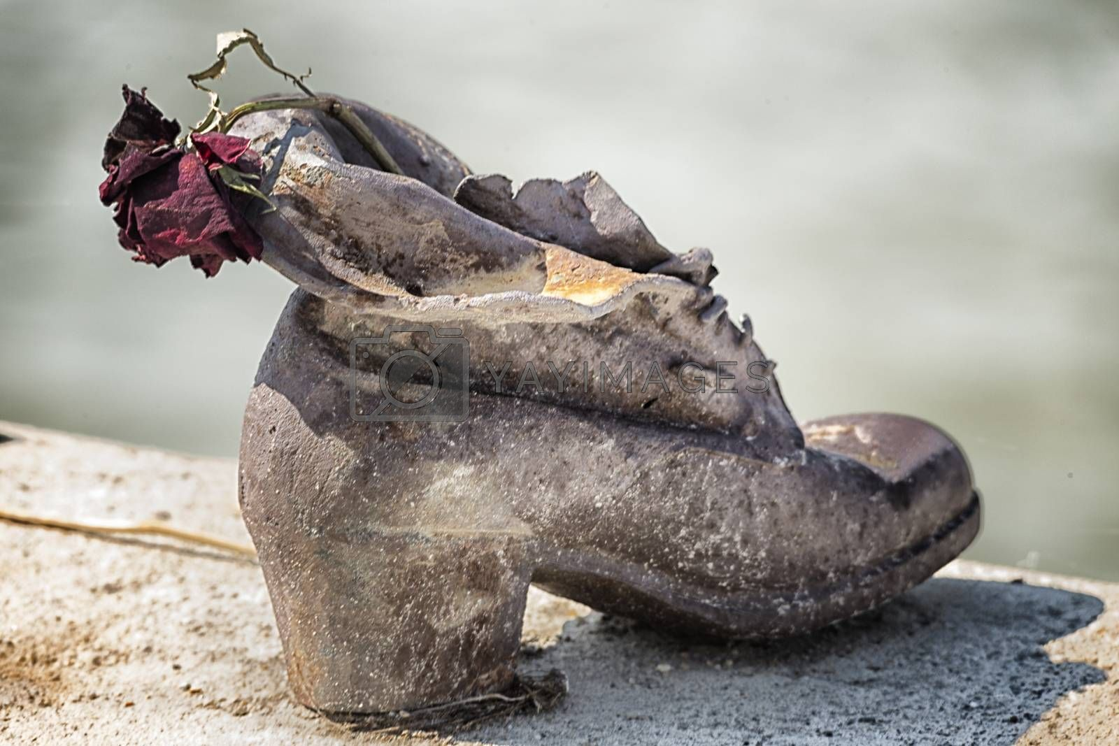 Rose on shoes on the Danube Bank in Budapest by paocasa