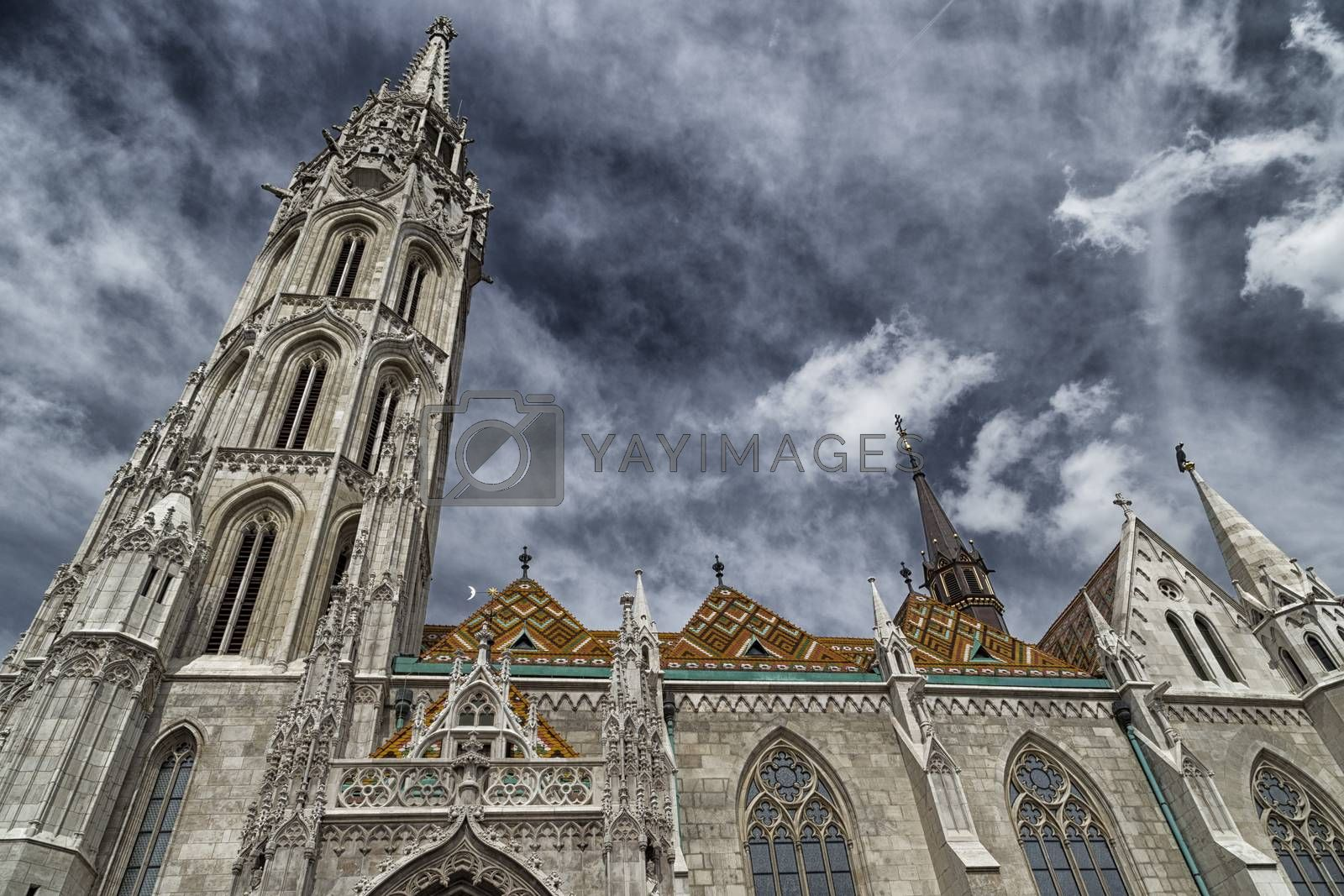 Mathias Church in Budapest by paocasa