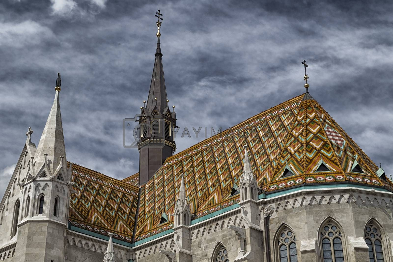 Mathias Church in Budapest by paocasa