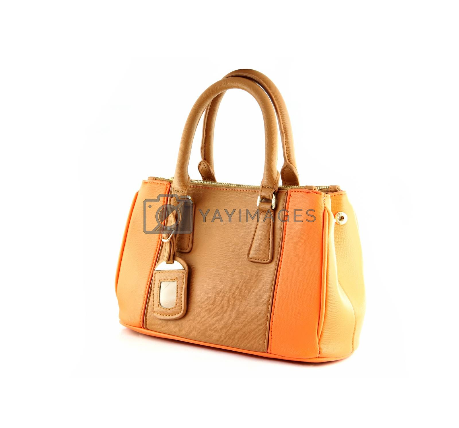 Brown handbag of texture leather isolated on white background.