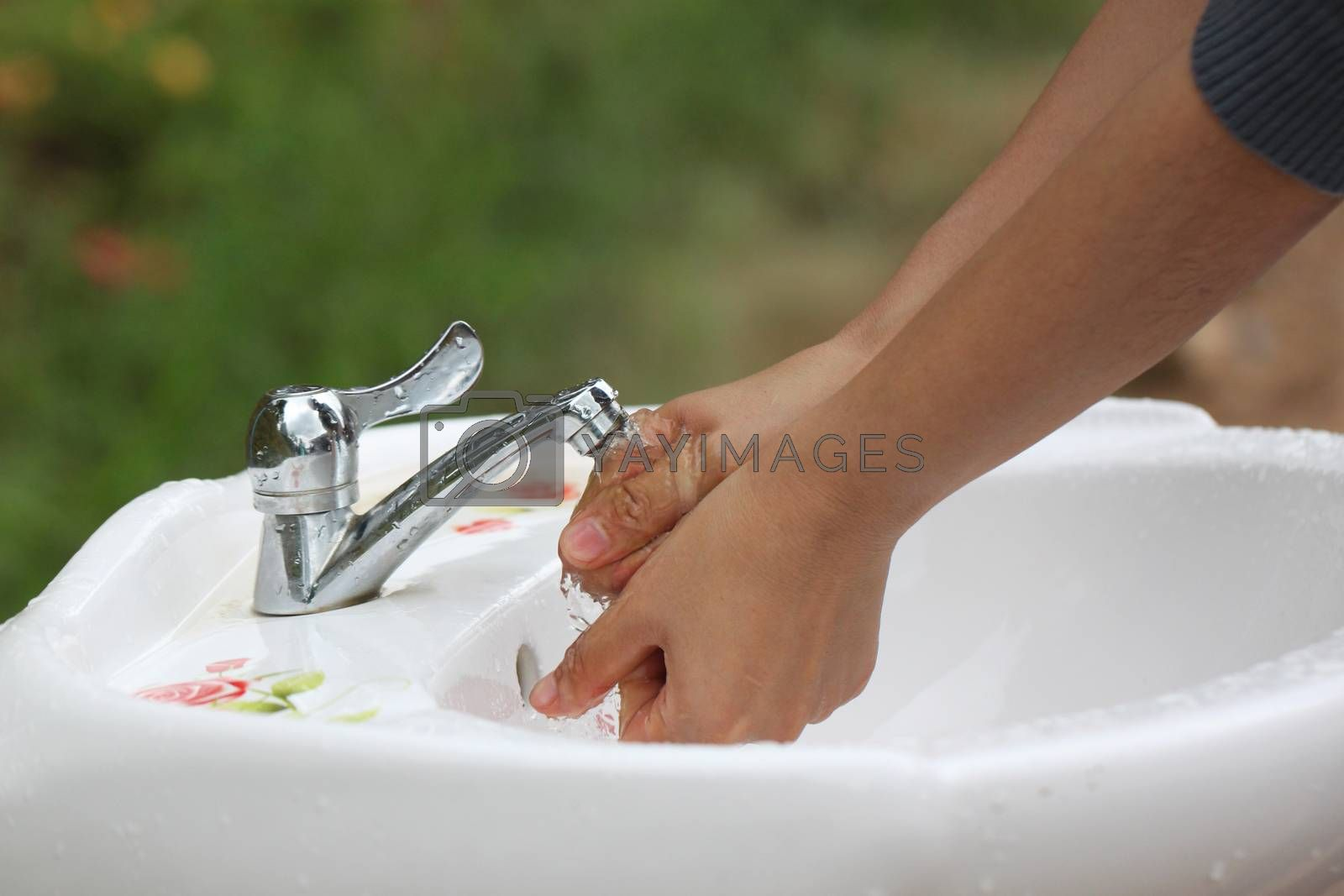 Women's hands are washed clean of faucets.