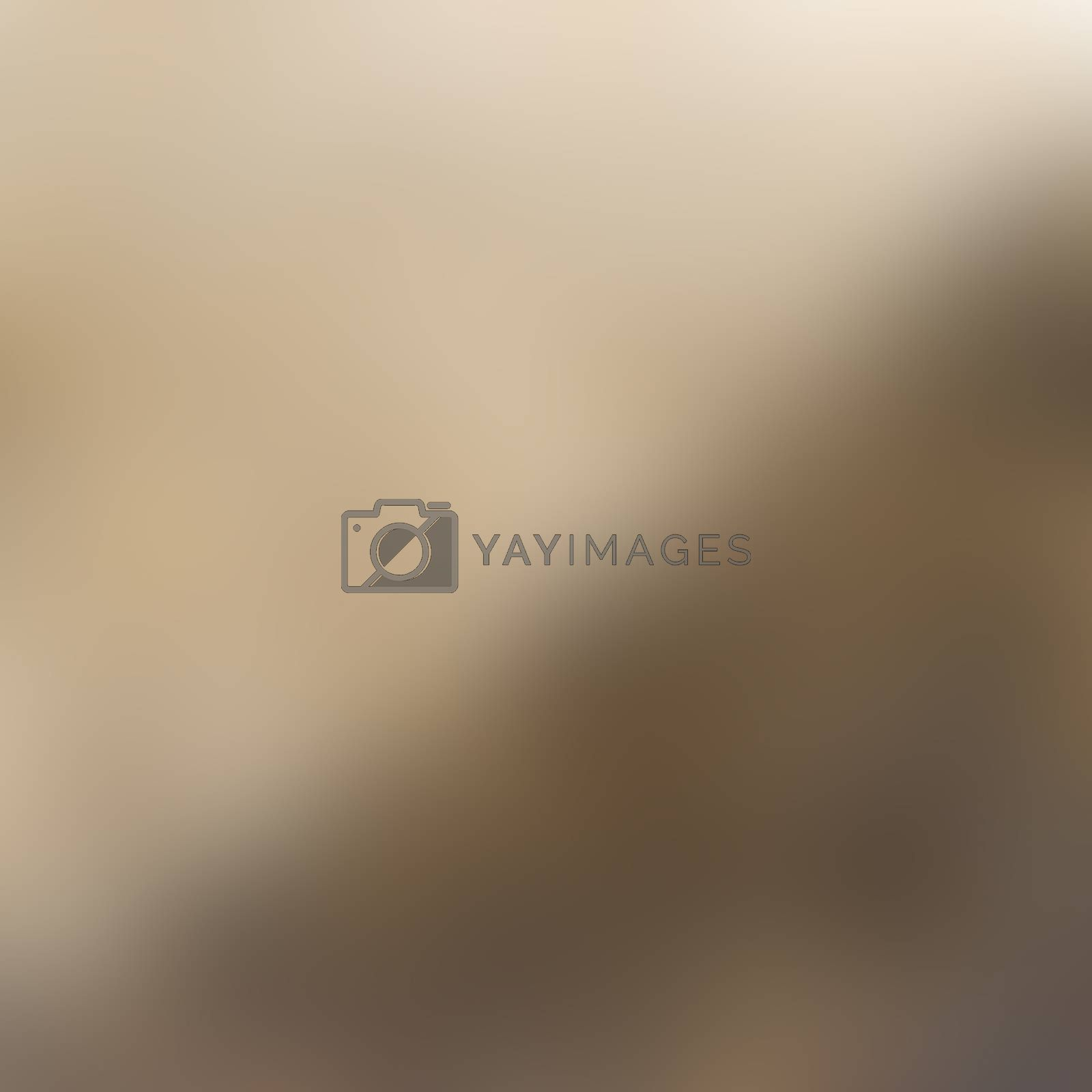 Earth tone. Abstract background wallpaper use for presentation.