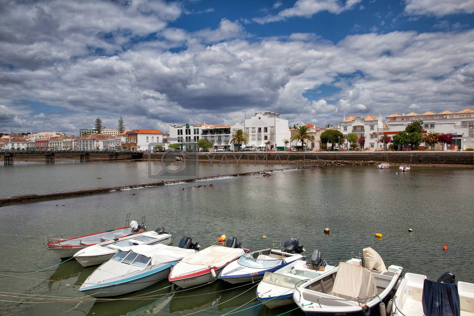 Royalty free image of Historic architecture in Tavira city, Algarve,Portugal by CaptureLight