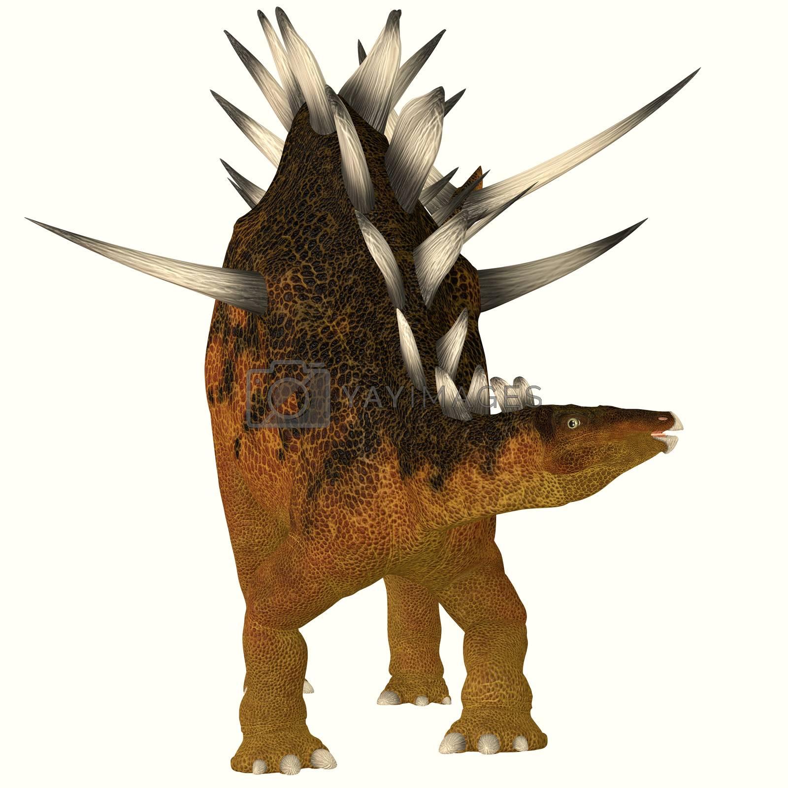 Royalty free image of Kentrosaurus on White by Catmando