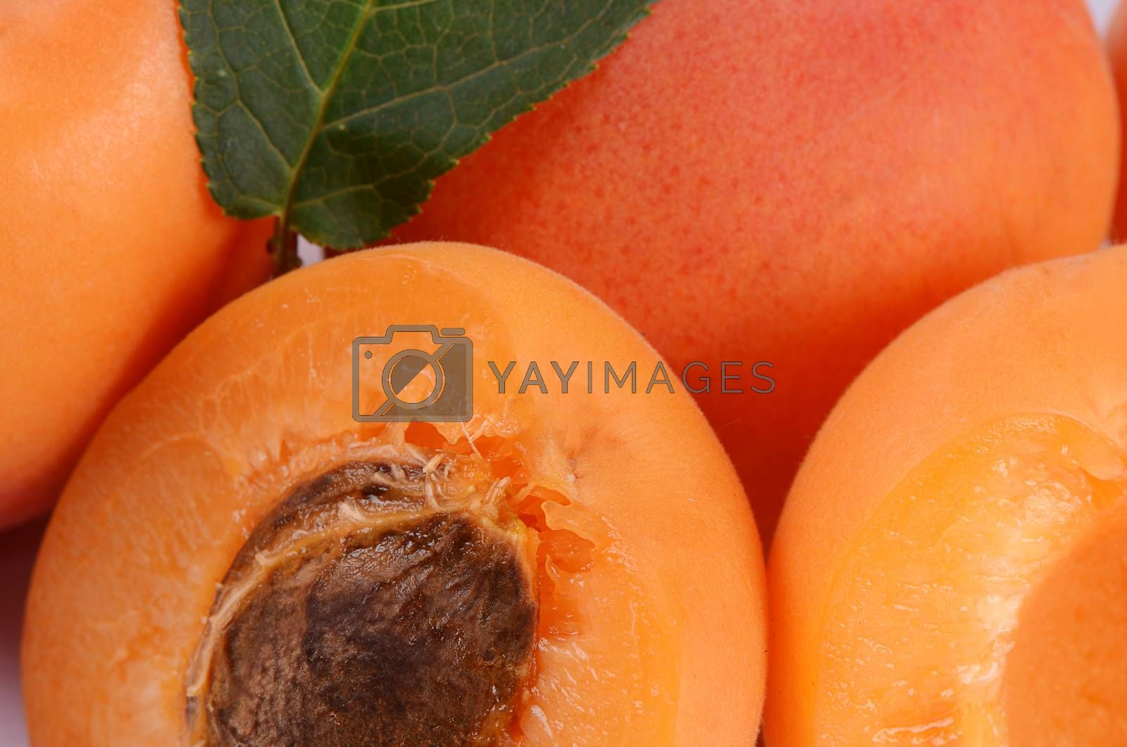 Royalty free image of Fresh apricot with a leaf by SvetaVo