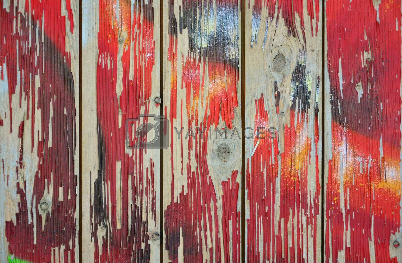 Royalty free image of Peeling paint on grunge wooden surface by Sergej