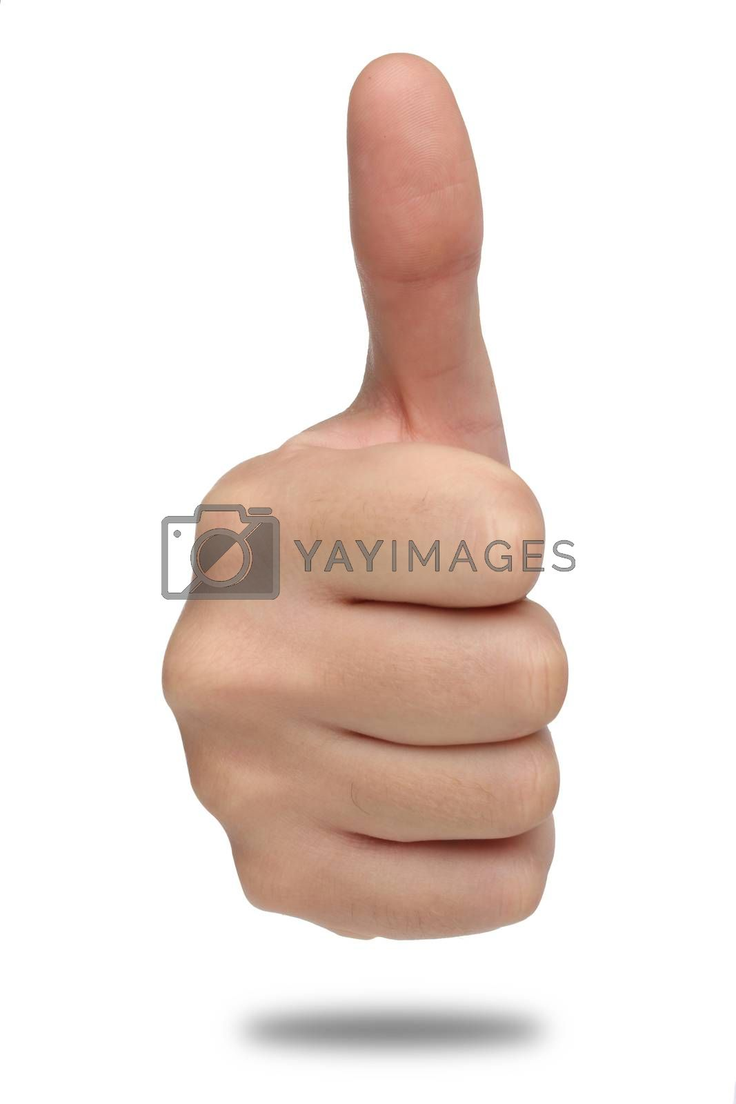 Royalty free image of Male hand sign with thumb up by Erdosain