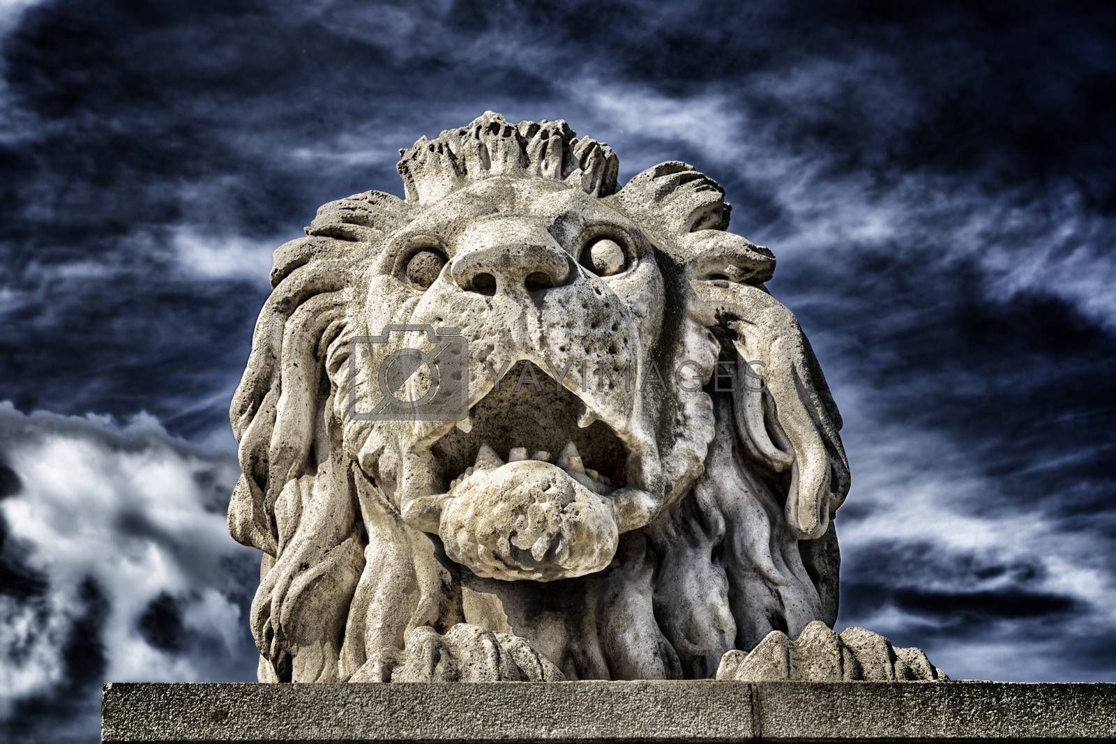 Lion of the Chain Bridge in Budapest by paocasa