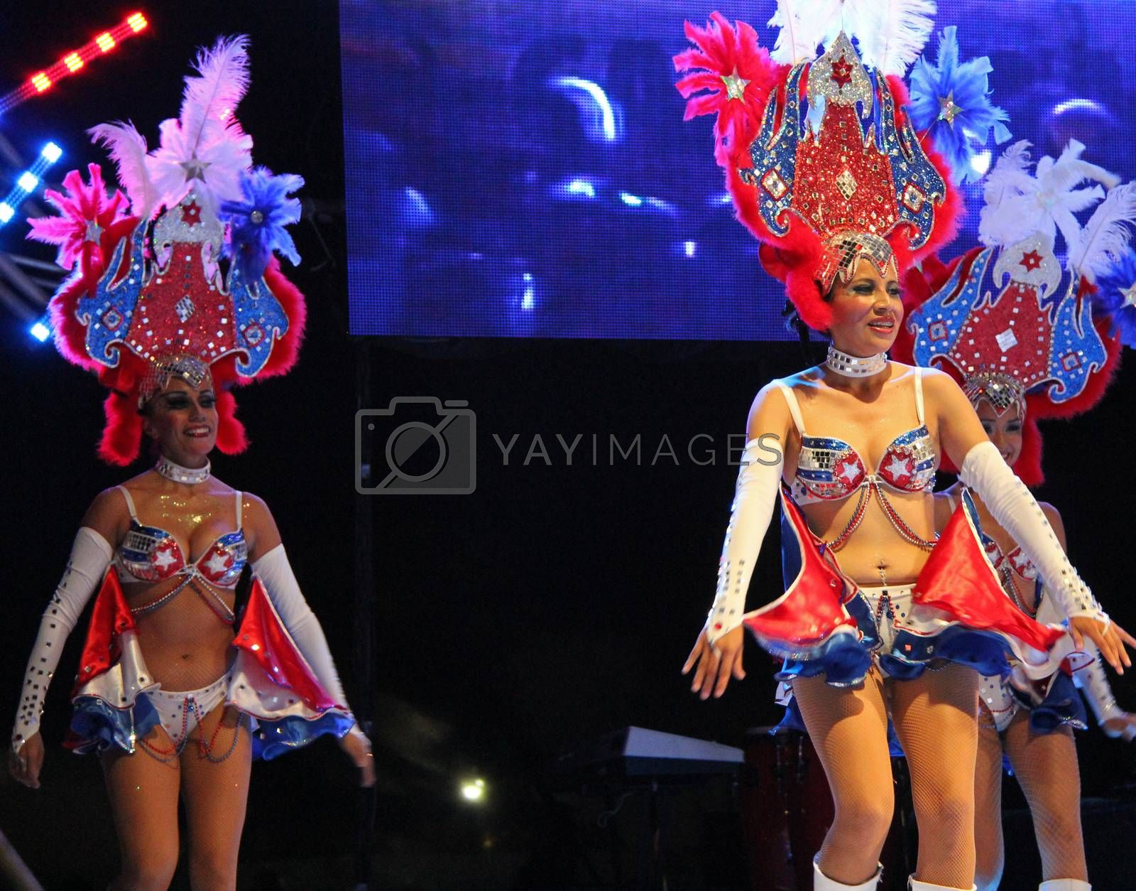 Royalty free image of Carnaval by photocdn39