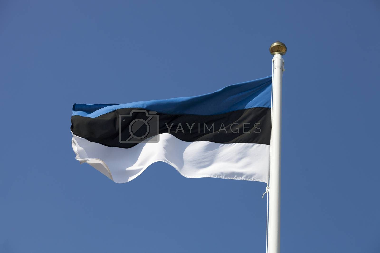 Royalty free image of Estonia flag on blue sky by ints