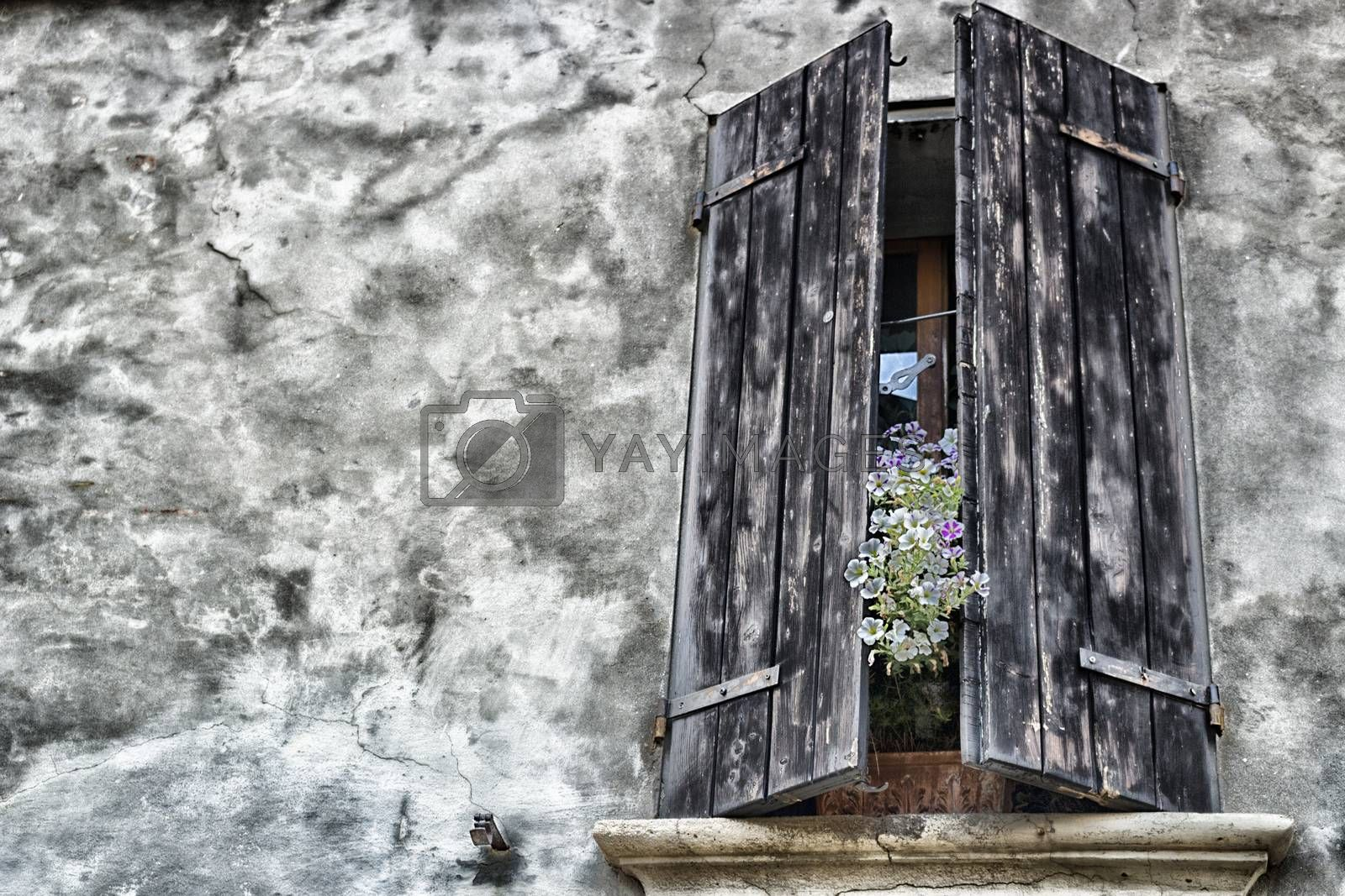 Old windows by paocasa