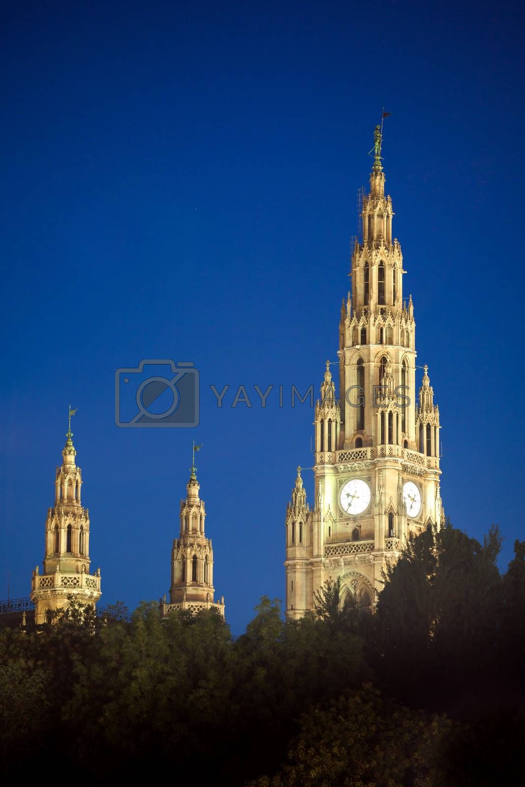 Gothic building tower of Vienna city hall by PixAchi