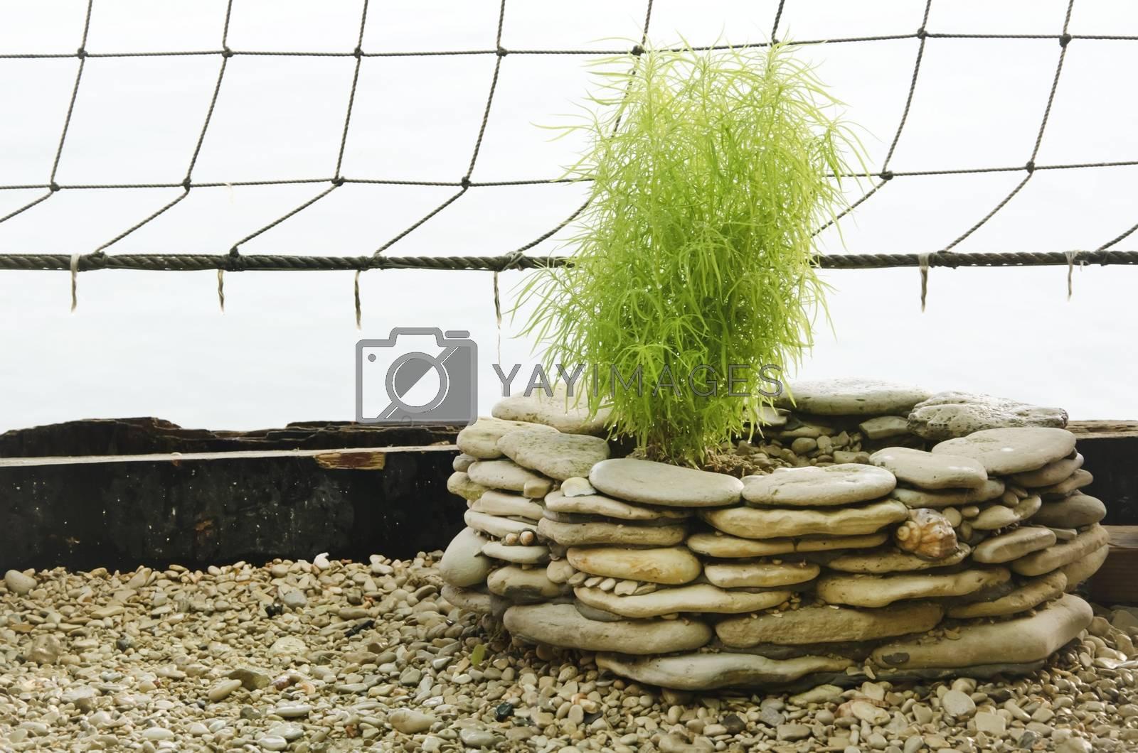 Royalty free image of Gardening Decoration by razvodovska