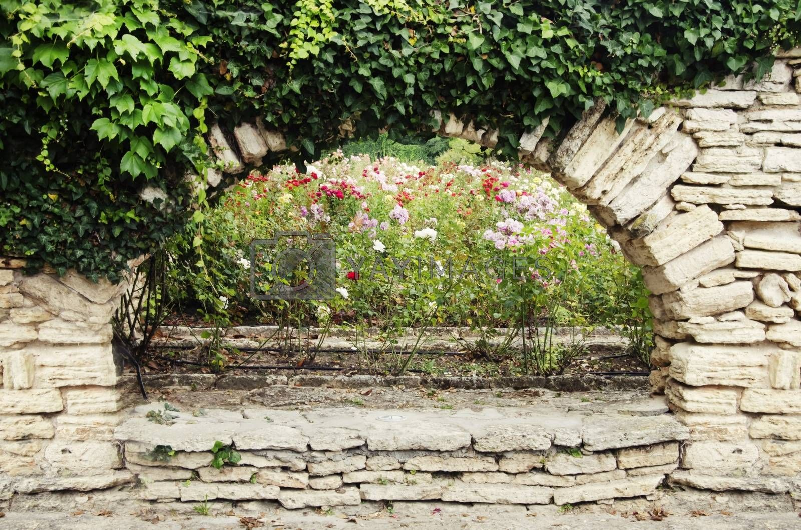Royalty free image of Stone Wall With Greenery by razvodovska