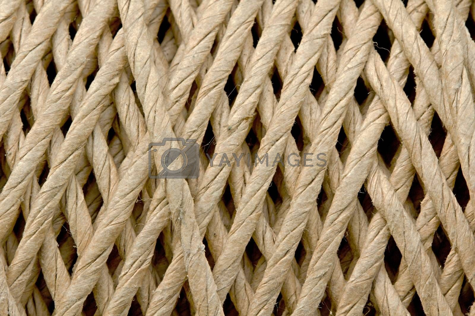 Photo shows detail of a nature rope.