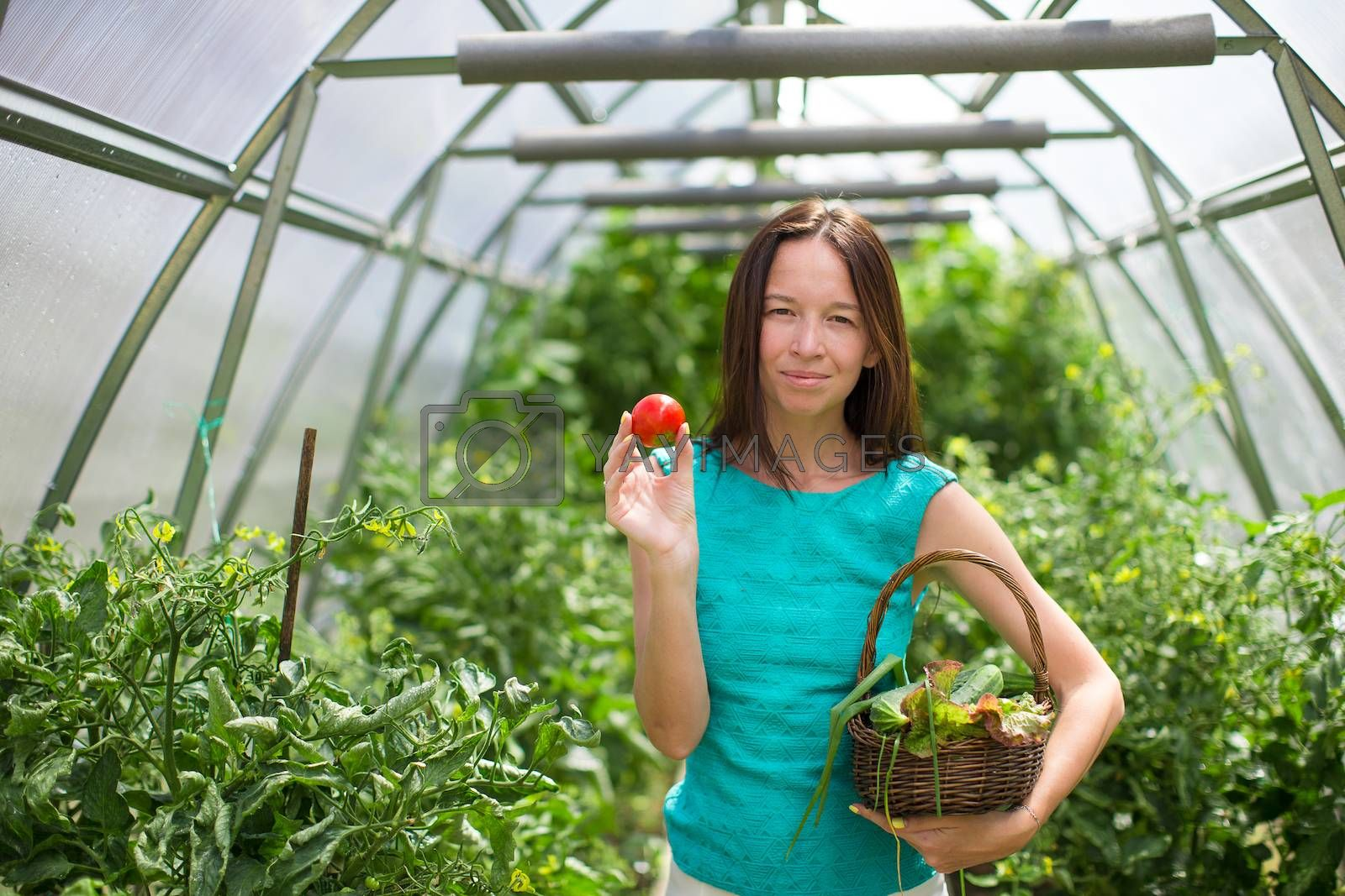 young woman holding a basket of greenery and  tomatos in greenhouse