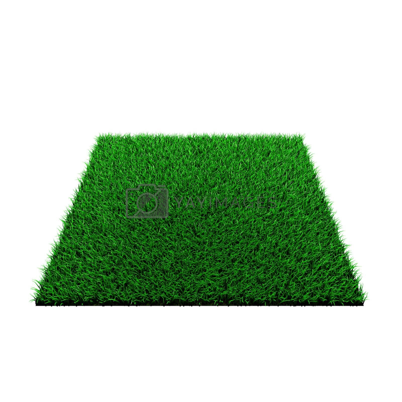 grass squared portion isolated on white background