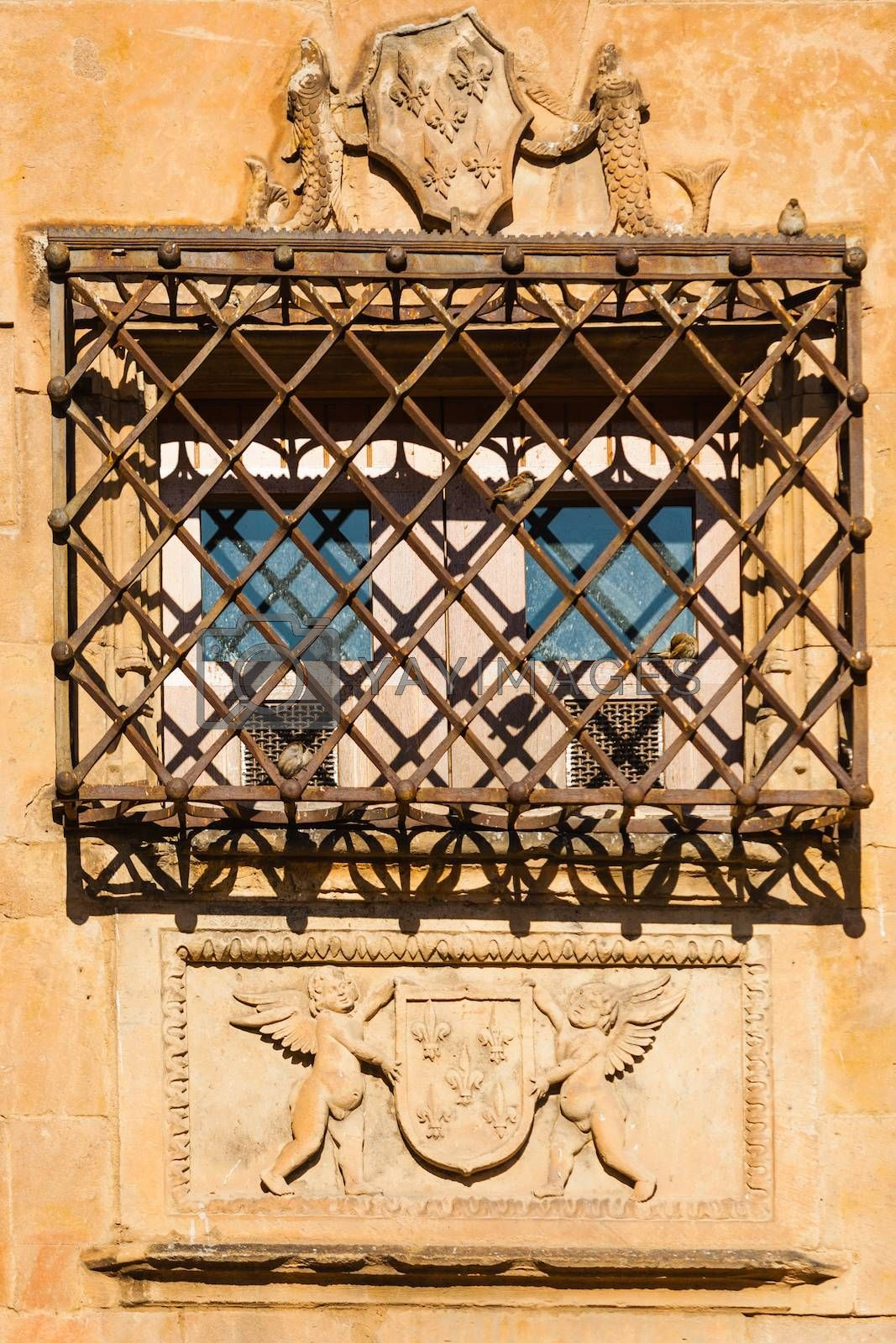 beautiful window and hard forge with birds in The House of Shells ,Salamanca Spain