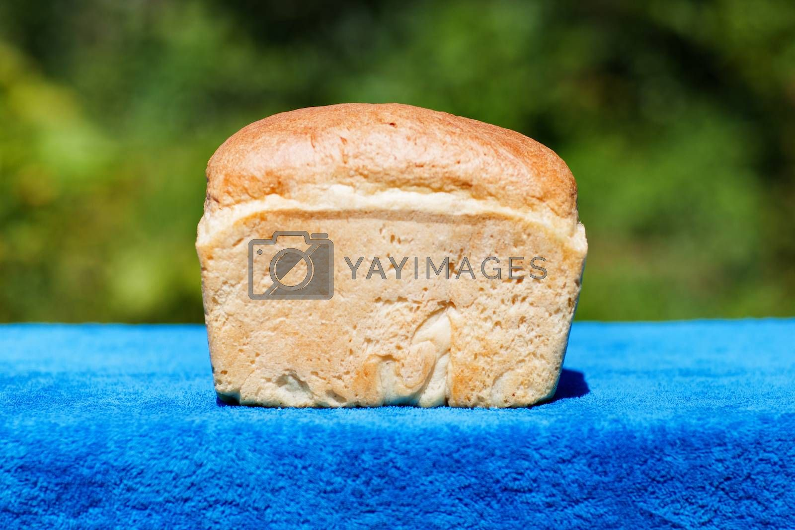 a fresh good bread outdoors