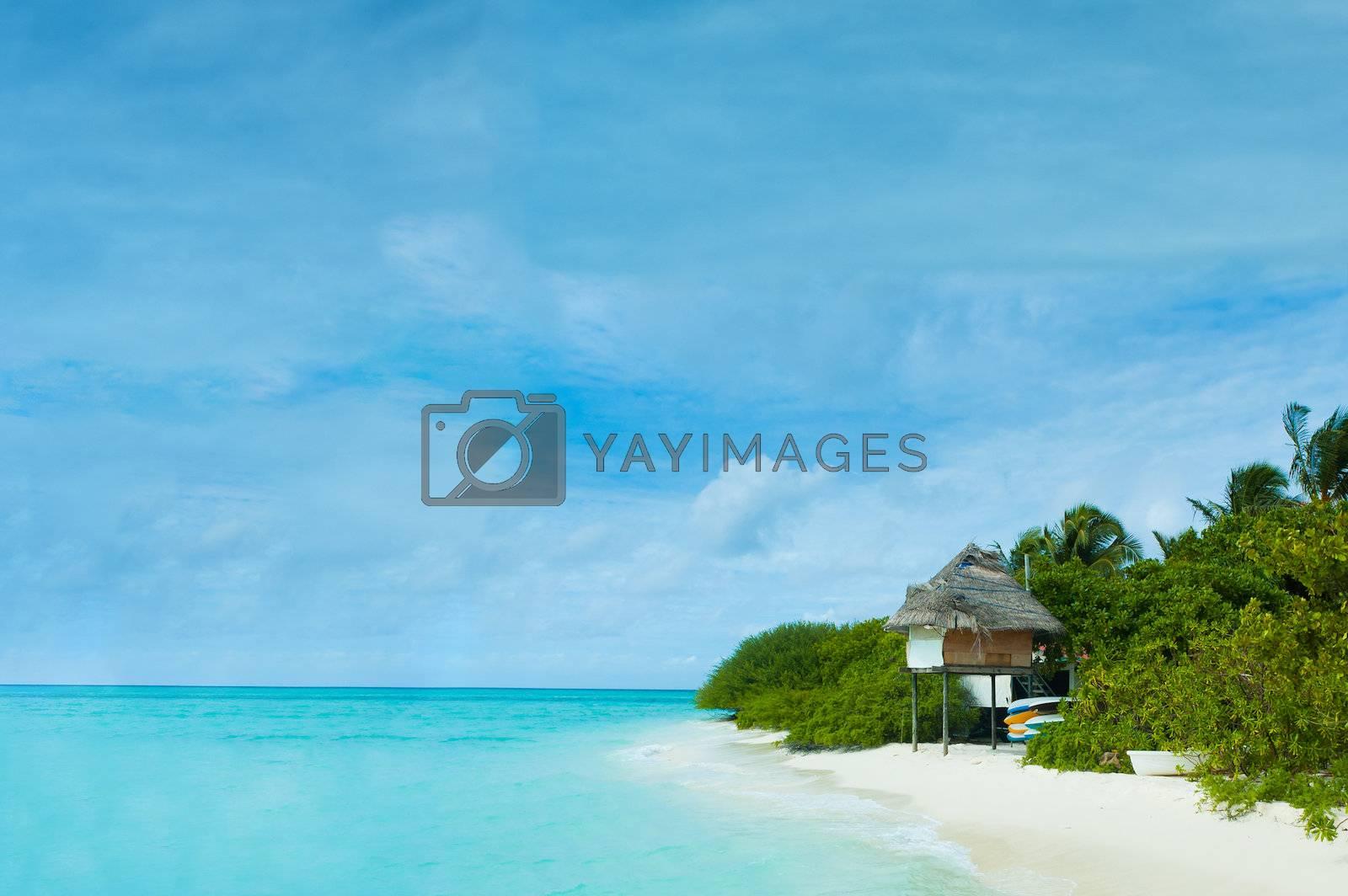 A hut in a tropical island