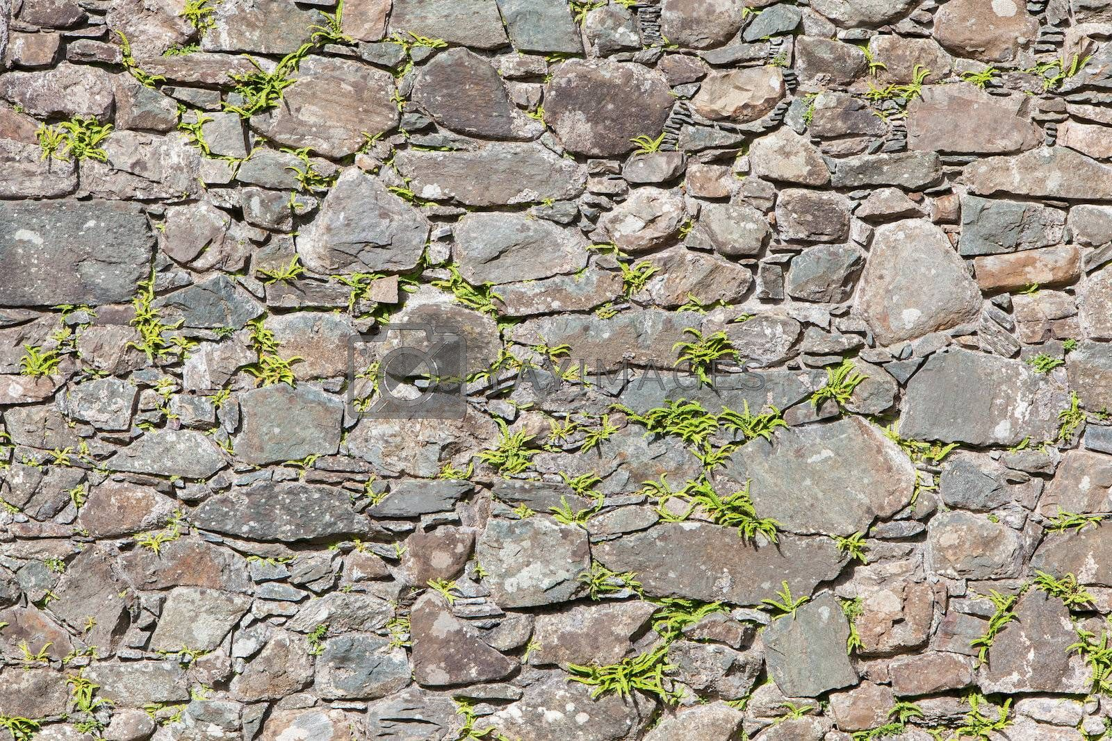 Antique natural stonewall, old stones in different sizes