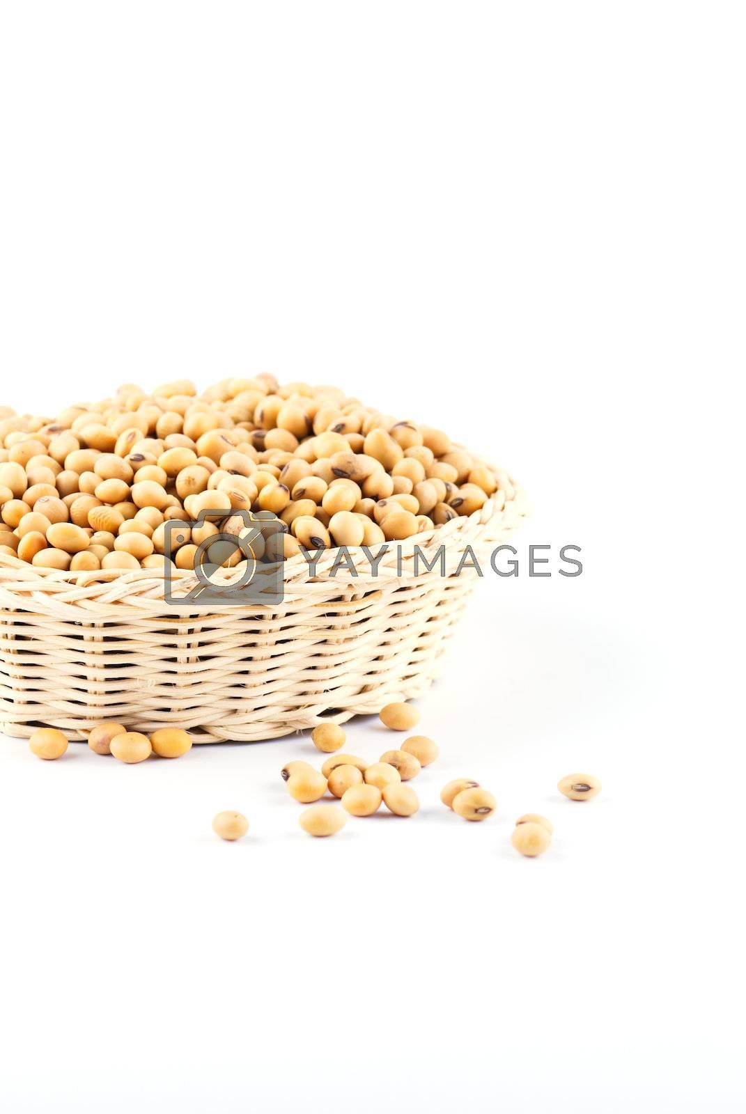 Royalty free image of soybean by teen00000
