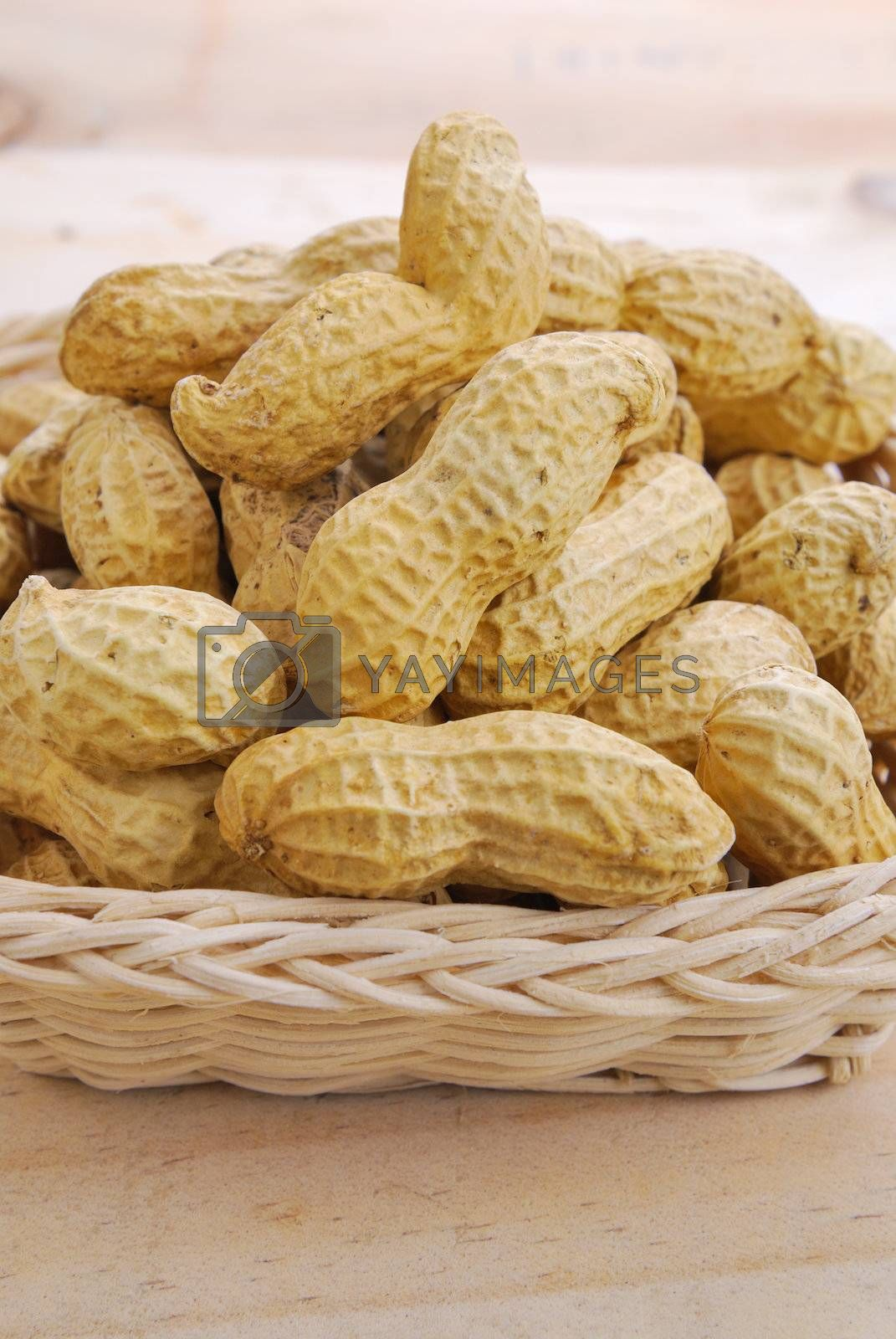 Royalty free image of Dried peanuts by teen00000