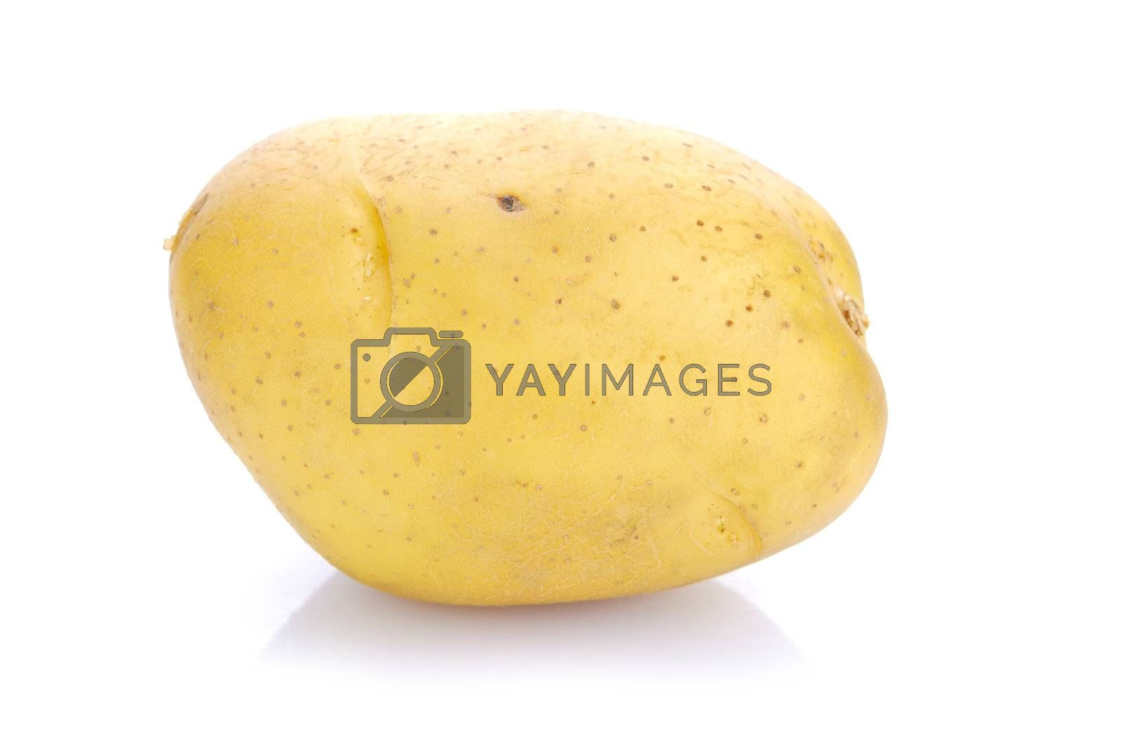 Royalty free image of potato on white background  by teen00000