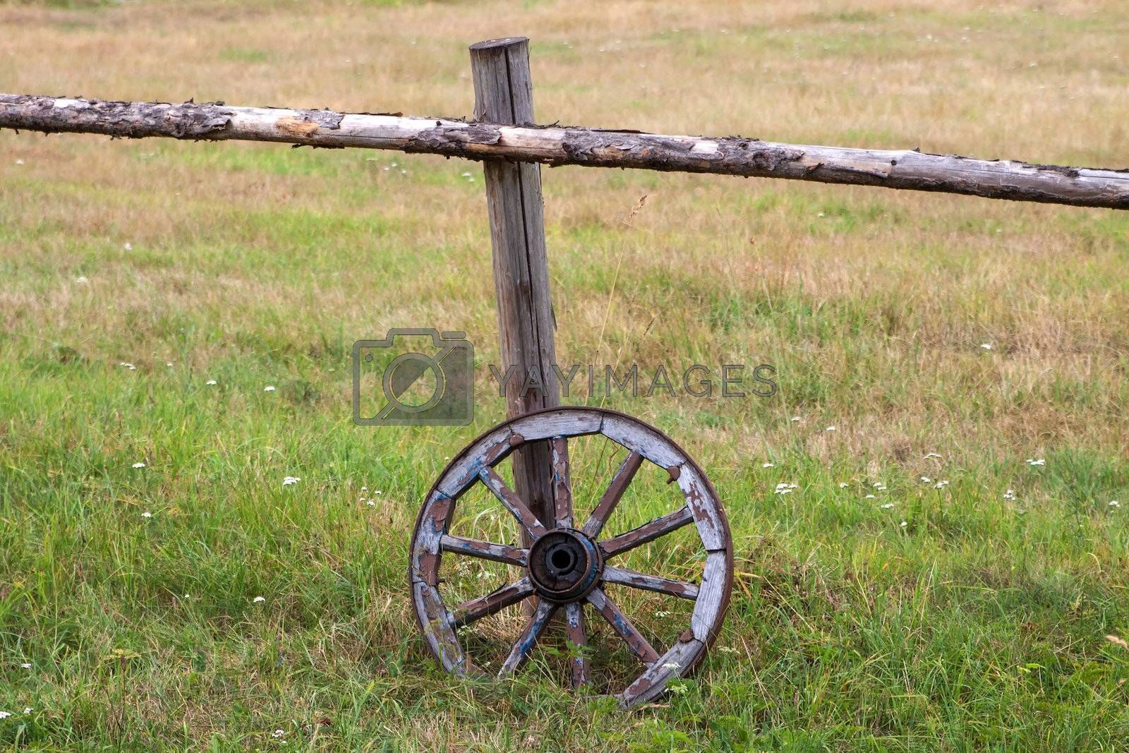 Royalty free image of Old wooden wheel  by Edoma