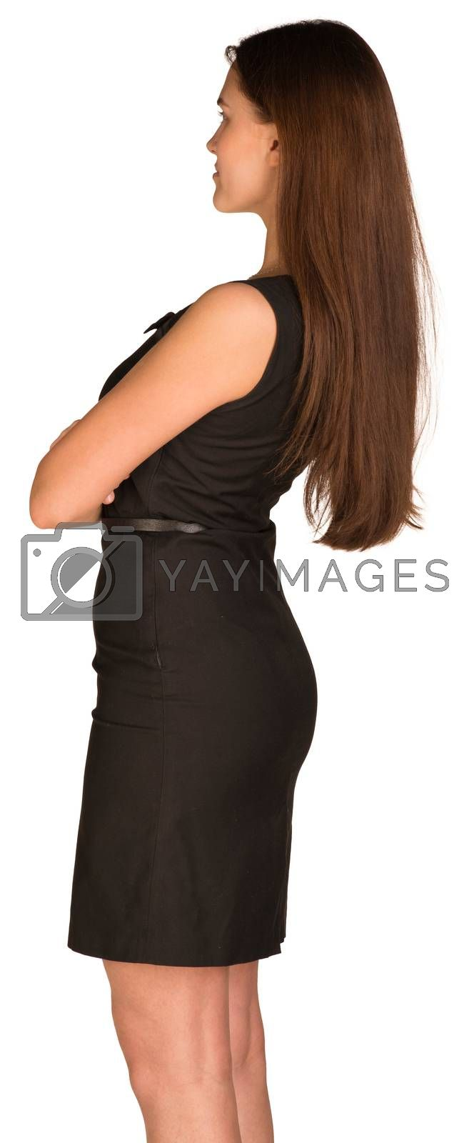 Royalty free image of Businesswoman in dress. Rear view by cherezoff