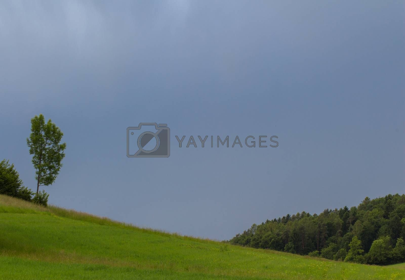 Beautiful landscape of valley in Alpine mountains