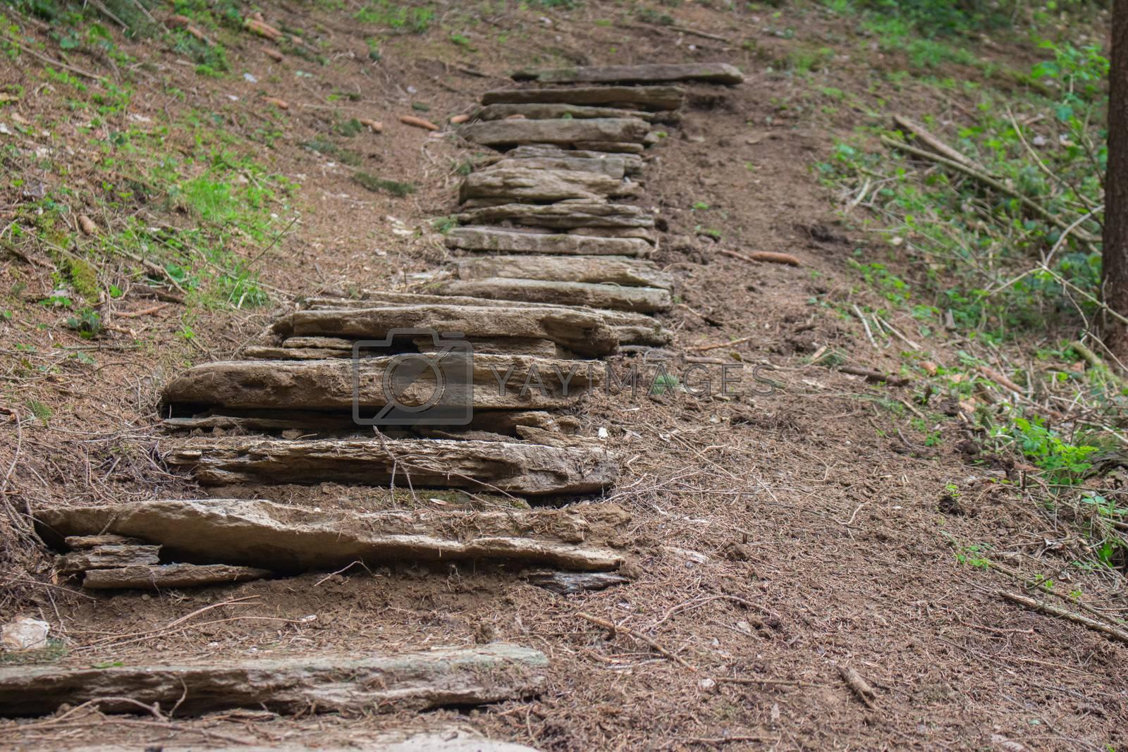 Ancient Roman path in the Austrian Alps