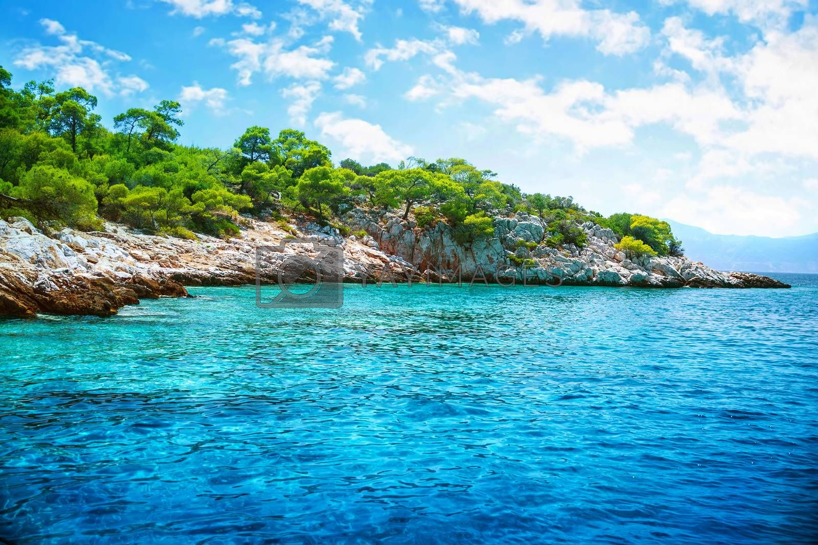 Beautiful landscape, clear blue sea, rocky seashore and fresh green trees on it, touristic place, panoramic scene, summer holidays concept