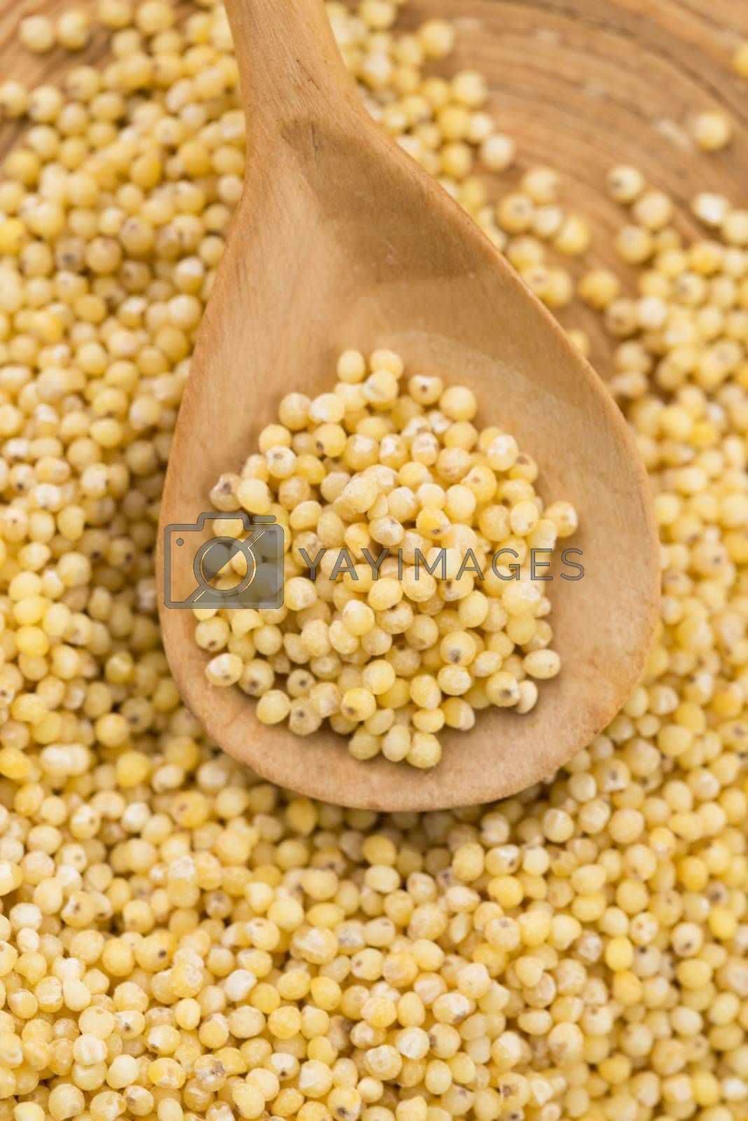 Royalty free image of millet groats  by joannawnuk