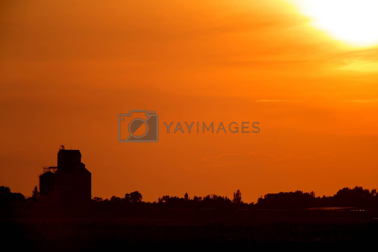 Royalty free image of Sunset Sillouette with Grain Elevator by pictureguy