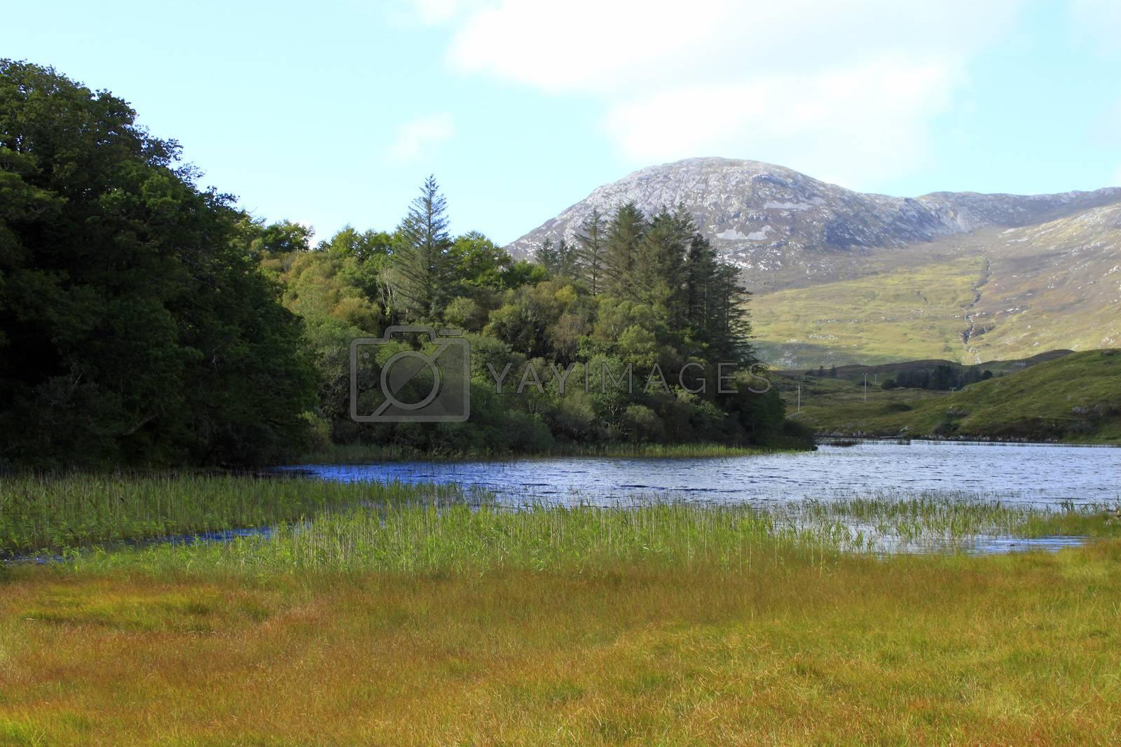 Royalty free image of Connemara rural scene by a_phoenix