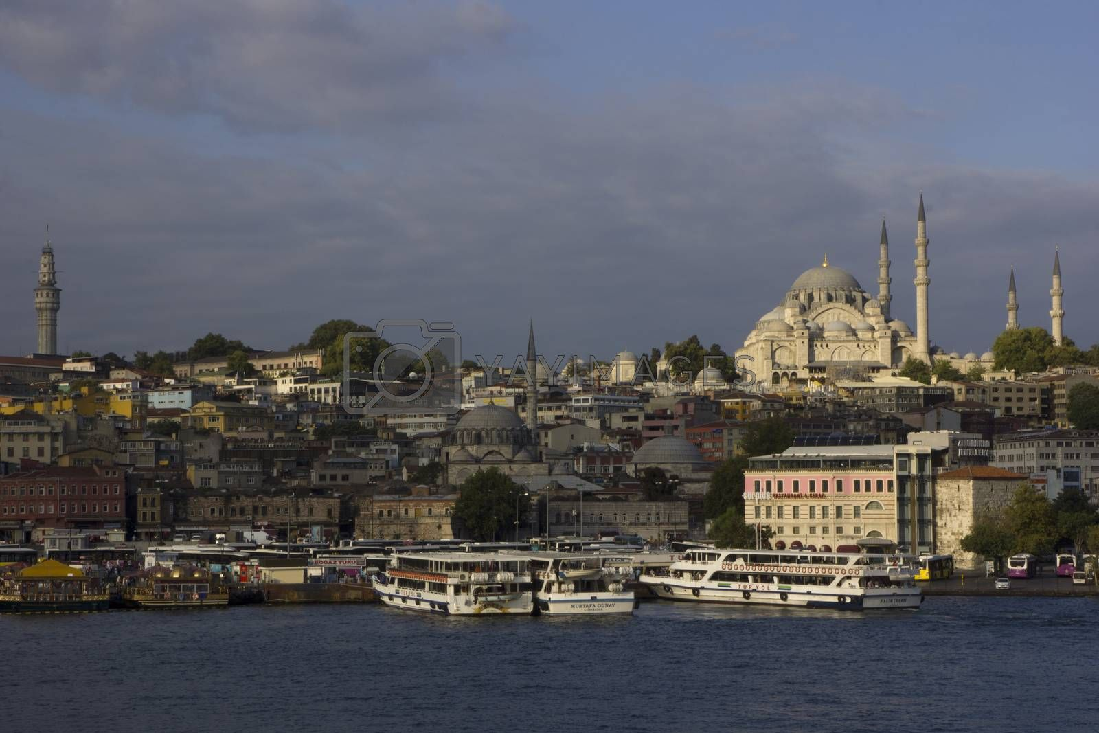 Royalty free image of Istanbul by photosil
