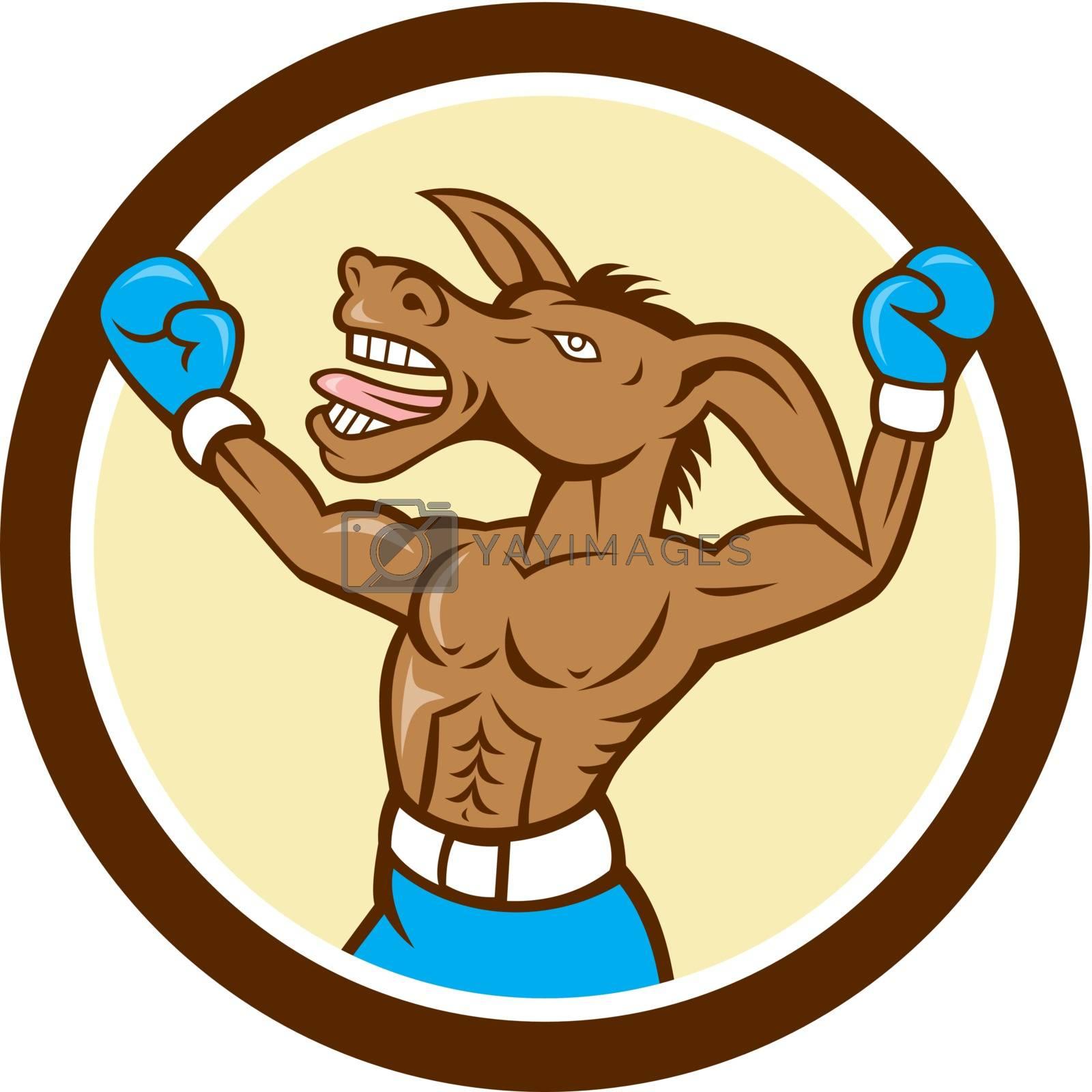 Royalty free image of Donkey Boxing Celebrate Circle Cartoon by patrimonio