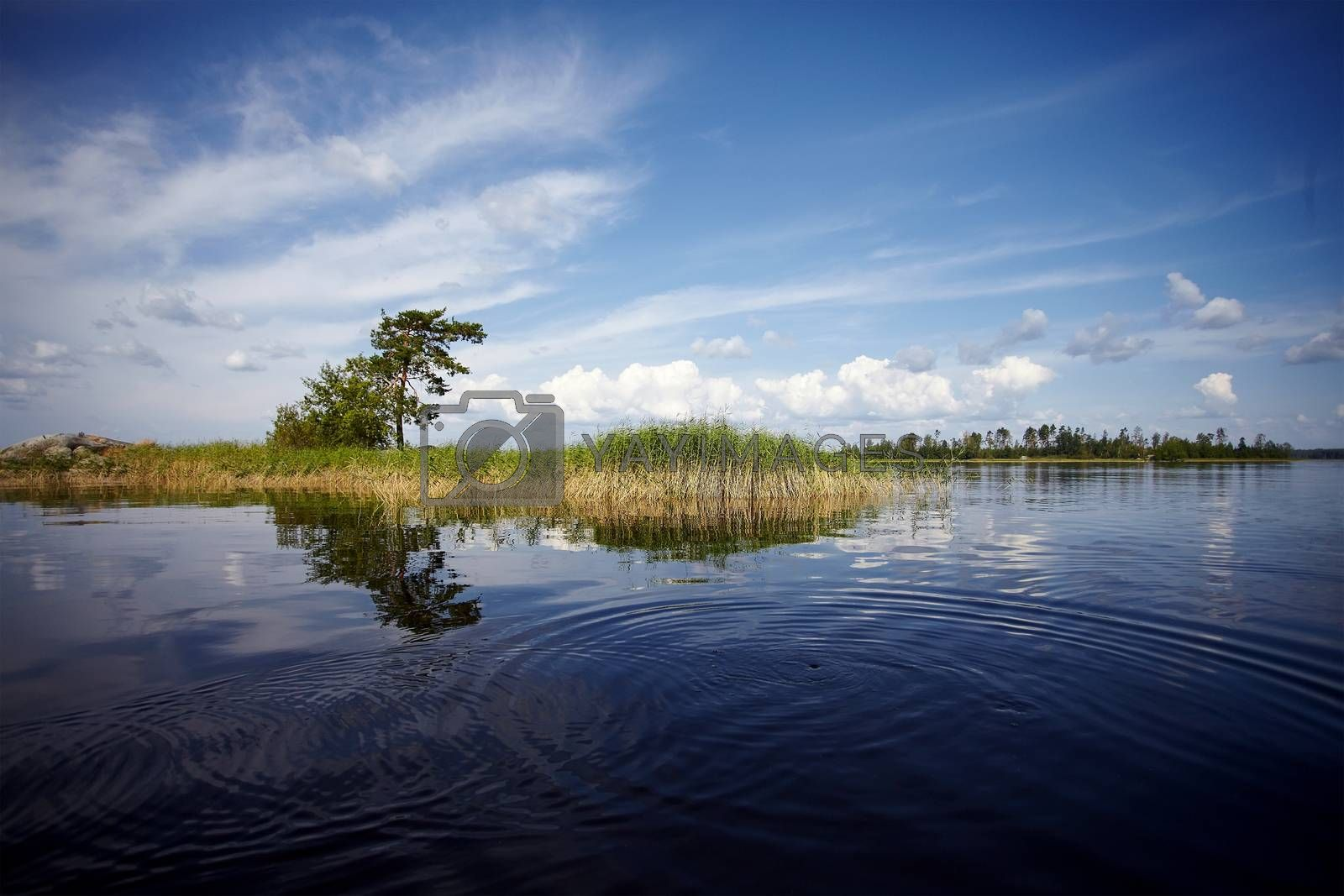 Royalty free image of Water landscape by Azaliya