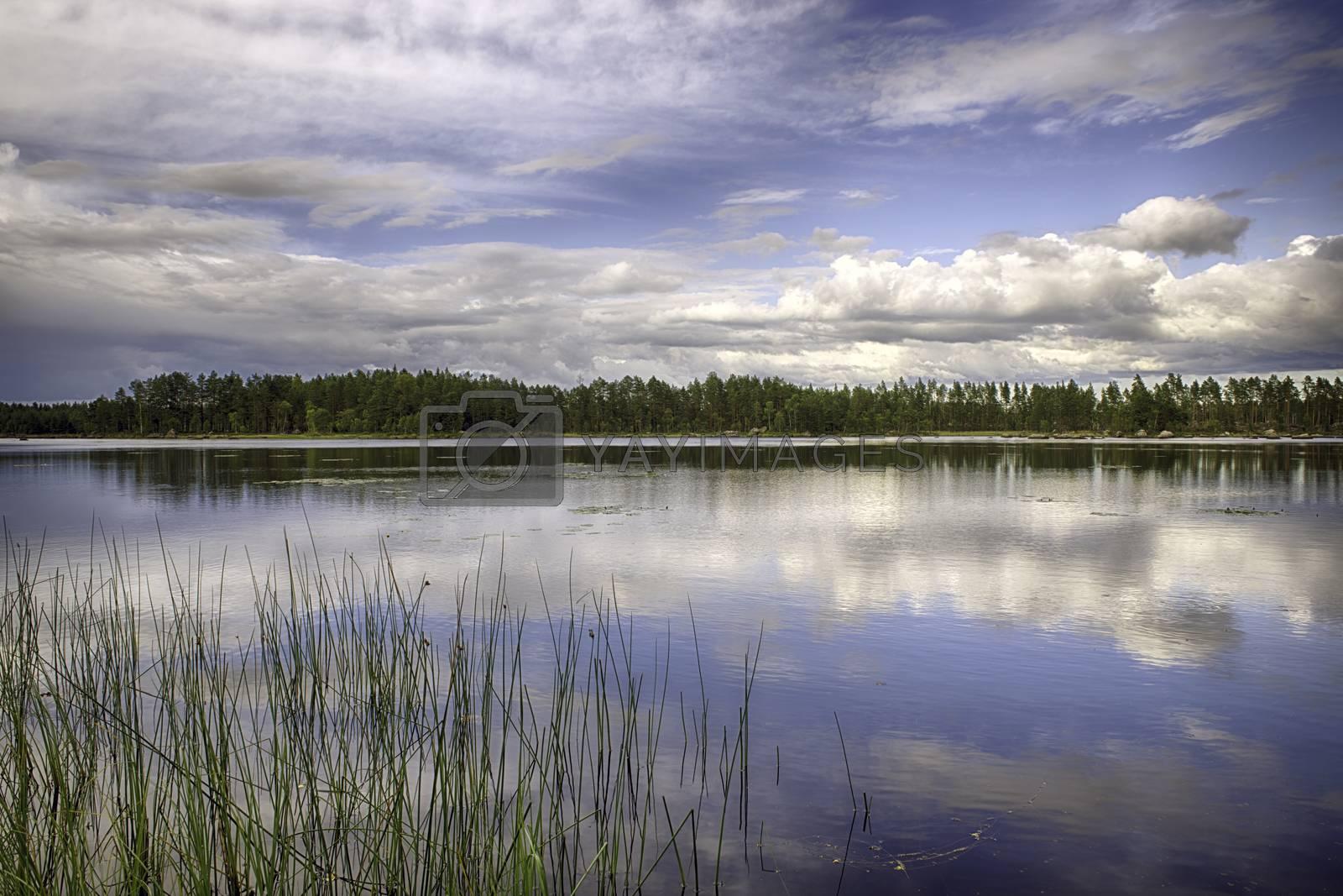 Royalty free image of Swedish Landscape by mizio1970
