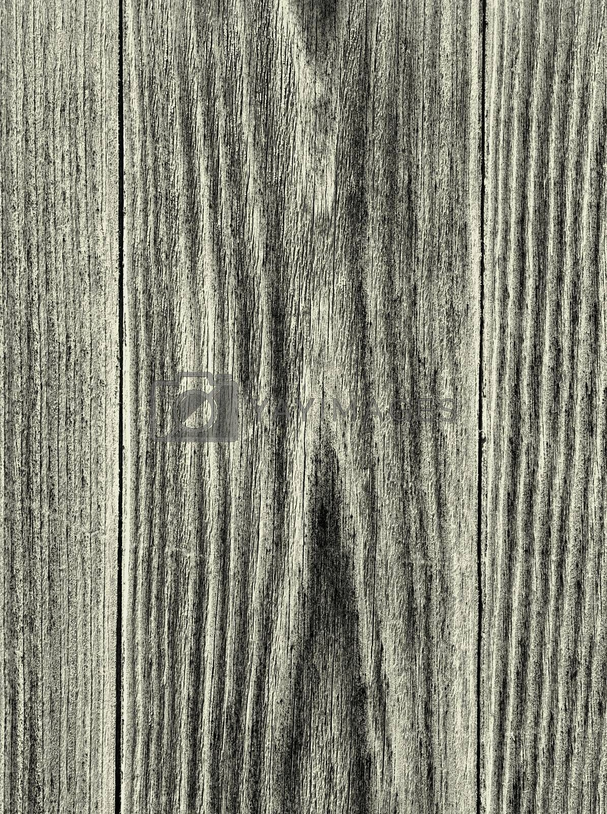 Royalty free image of Rustic Wood Boards Background by zhekos