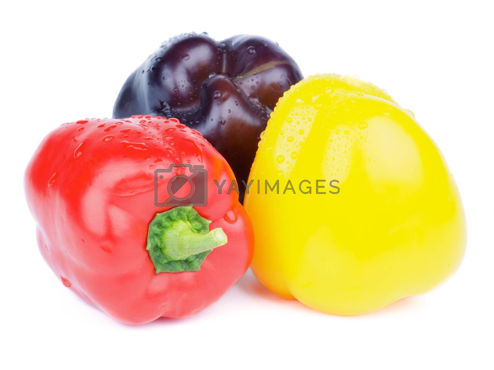 Royalty free image of Colorful Bell Peppers by zhekos