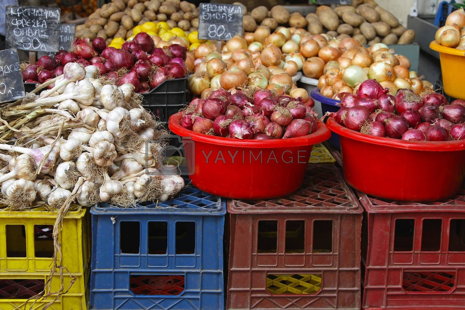 Royalty free image of Onion and garlic by Baloncici